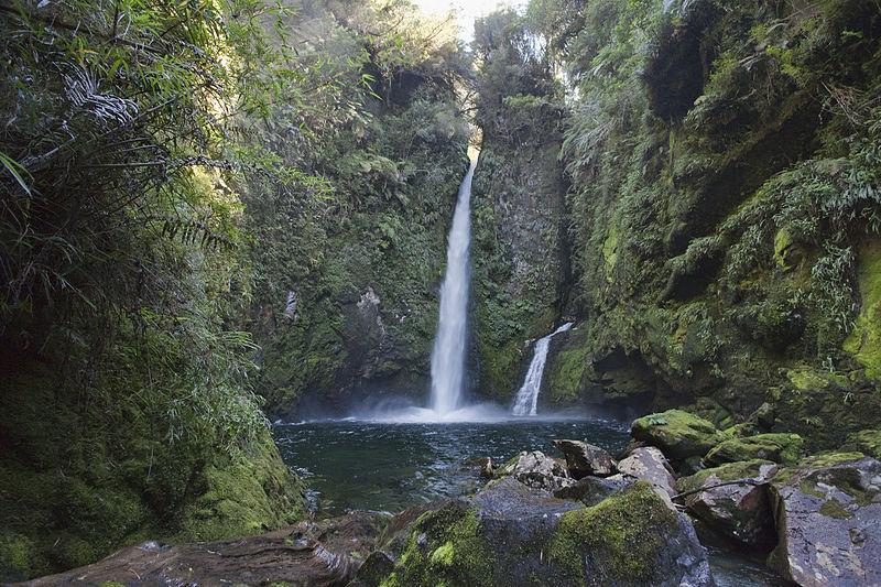 La viuda de Tompkins entregó las 400.000 hectáreas del Parque Pumalín a Chile / Wikimedia Commons