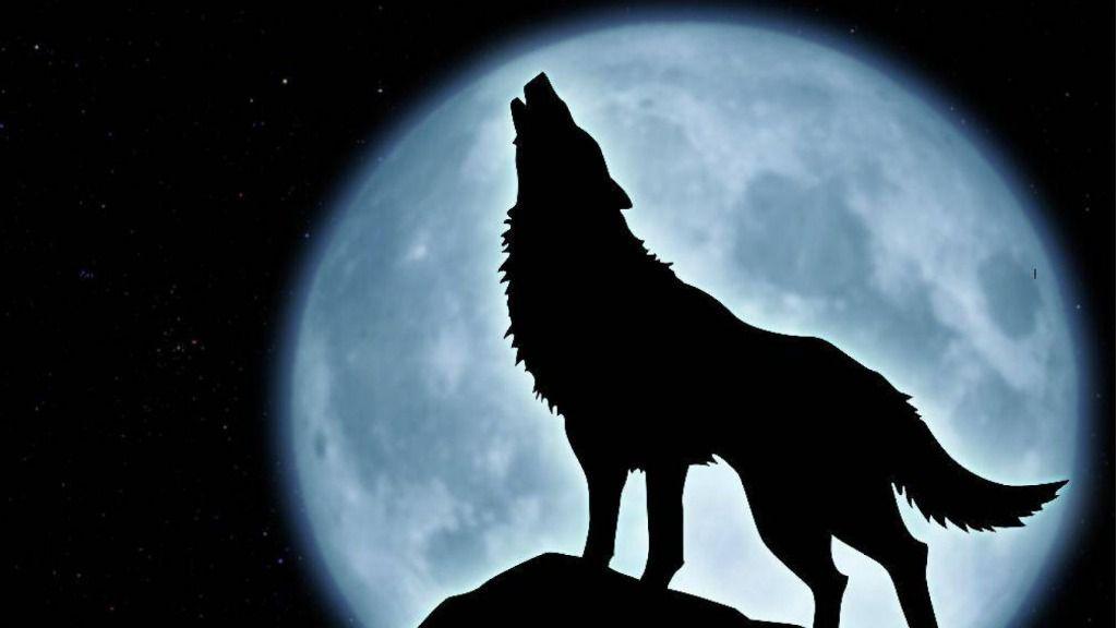 Según la leyenda este personaje fue condenado a vagar como un lobo sin suerte / Foto: ThingLink