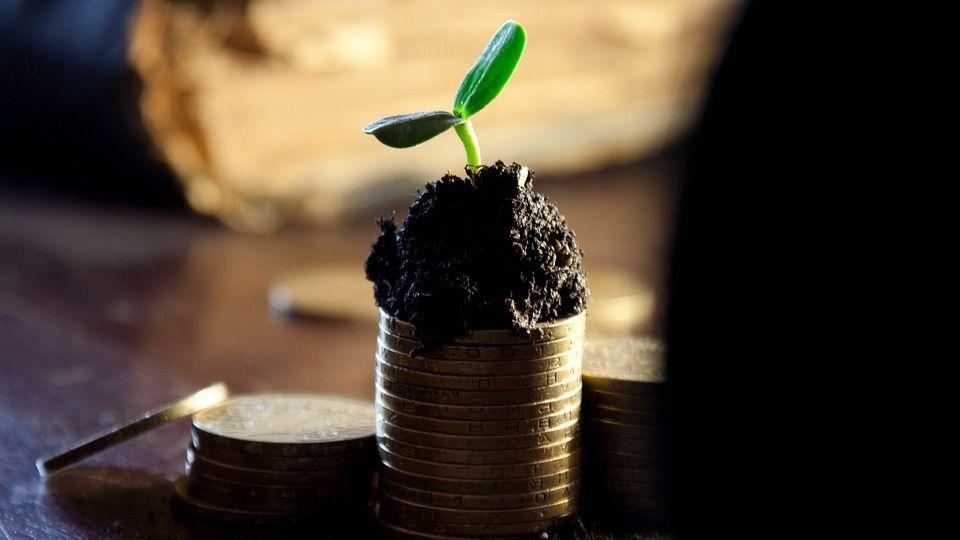 Los grupos españoles pagaron dividendos hasta en la crisis / Foto: Pixabay