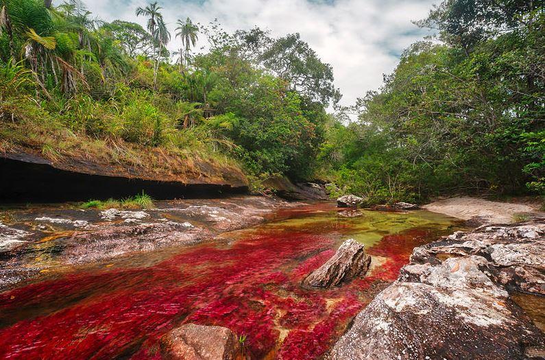 Colombia potencia el turismo postconflicto / Wikimedia Commons: Mario Carvajal