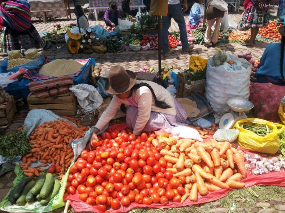 Telefónica y la FAO incorporarán herramientas digitales para facilitar las tareas agrícolas / Foto: Pxhere