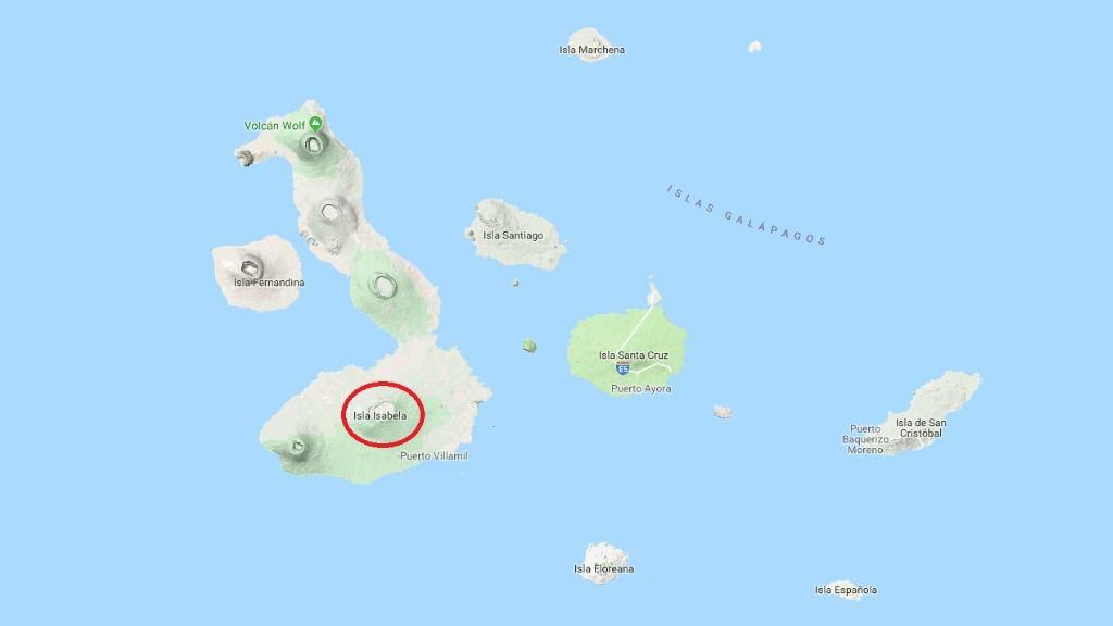 50 personas evacuadas tras la erupción del volcán / Foto: Google Maps