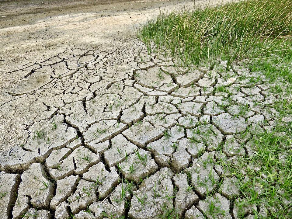 América Latina es una de las regiones más vulnerables al cambio climático / Foto: Pixabay
