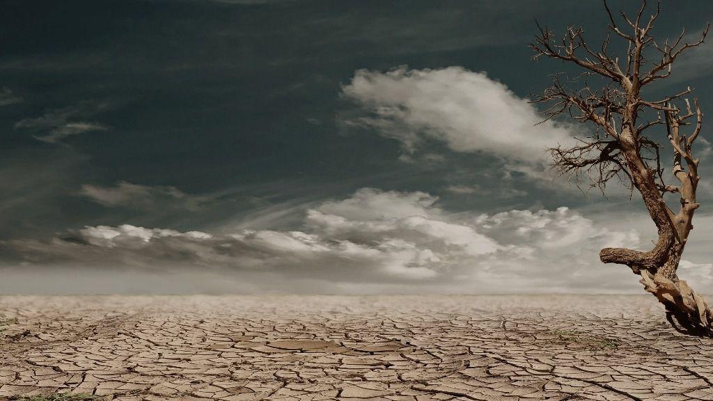 ¿Se aprovechará la experiencia del coronavirus para afrontar el cambio climático? / Foto: Pexels