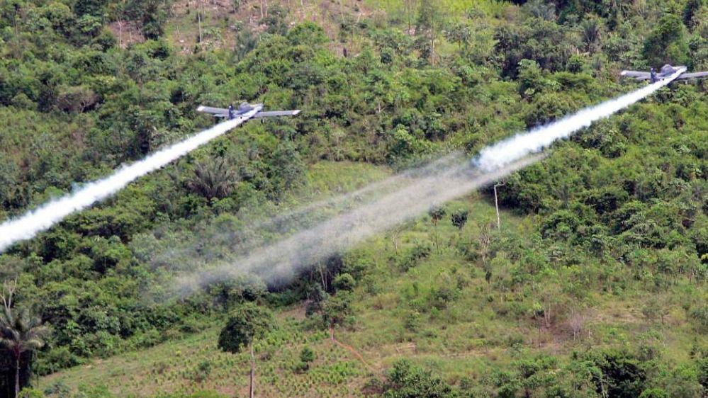 El gobierno cree que las fumigaciones se puede hacer de forma segura / Foto: WC