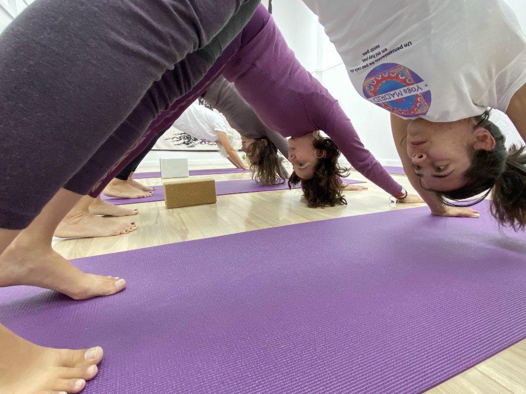 La práctica del yoga busca el equilibrio entre cuerpo y mente / Foto: Cortesía