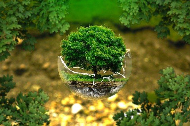 Muchas promesas, pero pocos hechos en la lucha contra el cambio climático / Foto: Pixabay