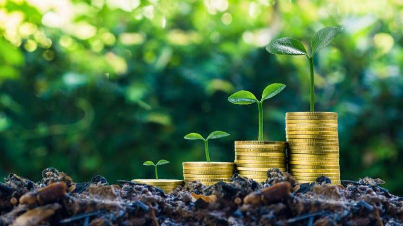 Los bonos verdes son cada vez más tenidos en cuenta por los inversores / Foto: Pixabay
