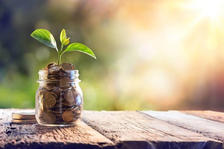 Las inversiones respetuosas con el medio ambiente son tendencia / Foto: Pixabay