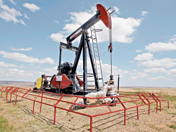 La Opep y sus aliados estiman un aumento de la demanda de crudo en el futuro inmediato.